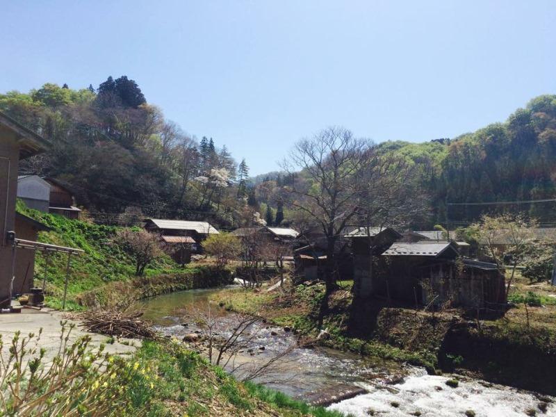 関川写真(800600)